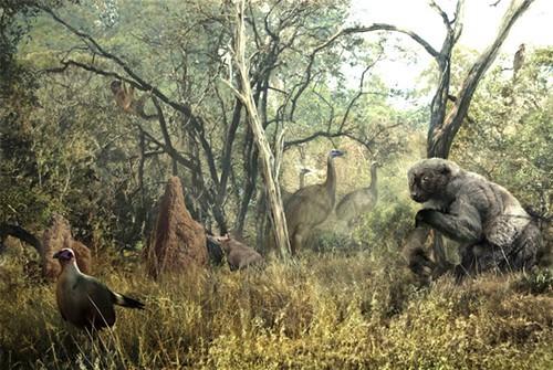 Savage prehistory